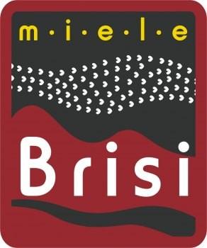 Brisi